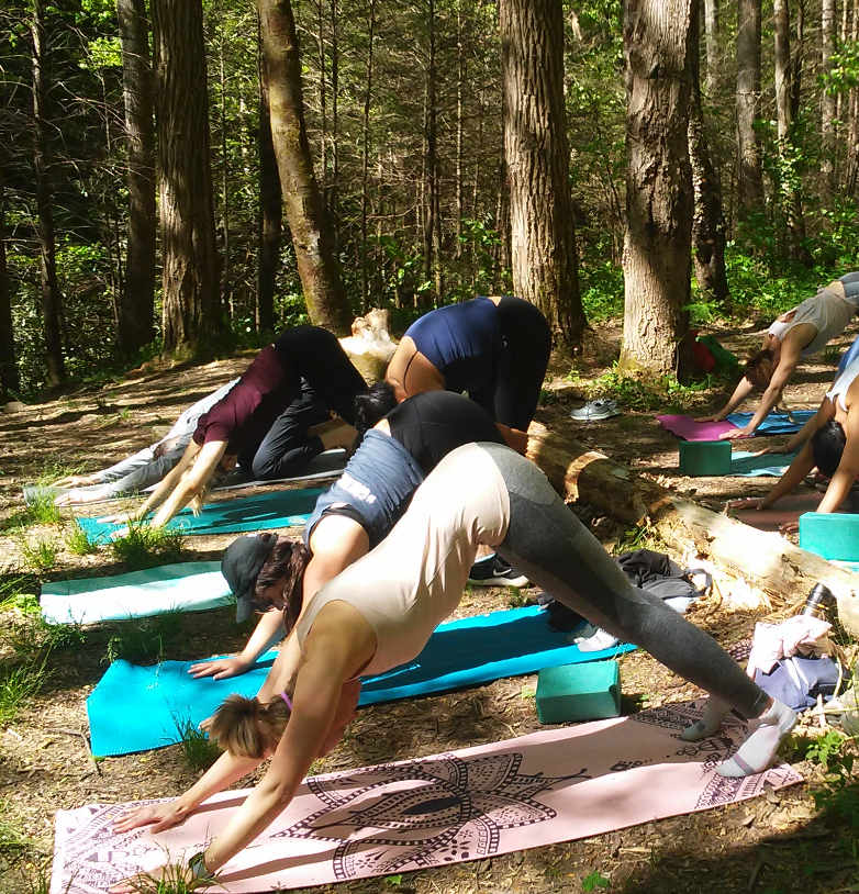 Asheville Outdoor Yoga.png