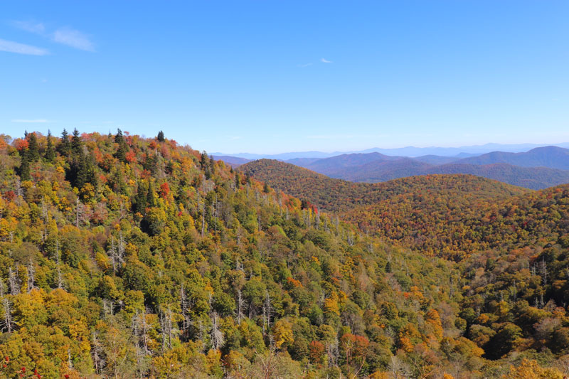 One of the many breathtaking views of the mountains from the Blue Ridge Parkway in Fall