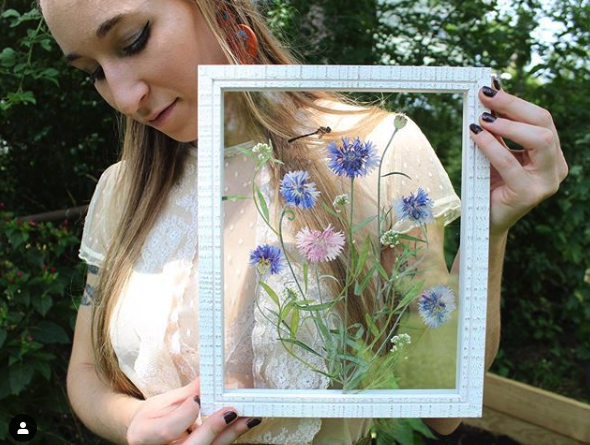 Asheville Artist Carly Gee & Pressed Flower Art