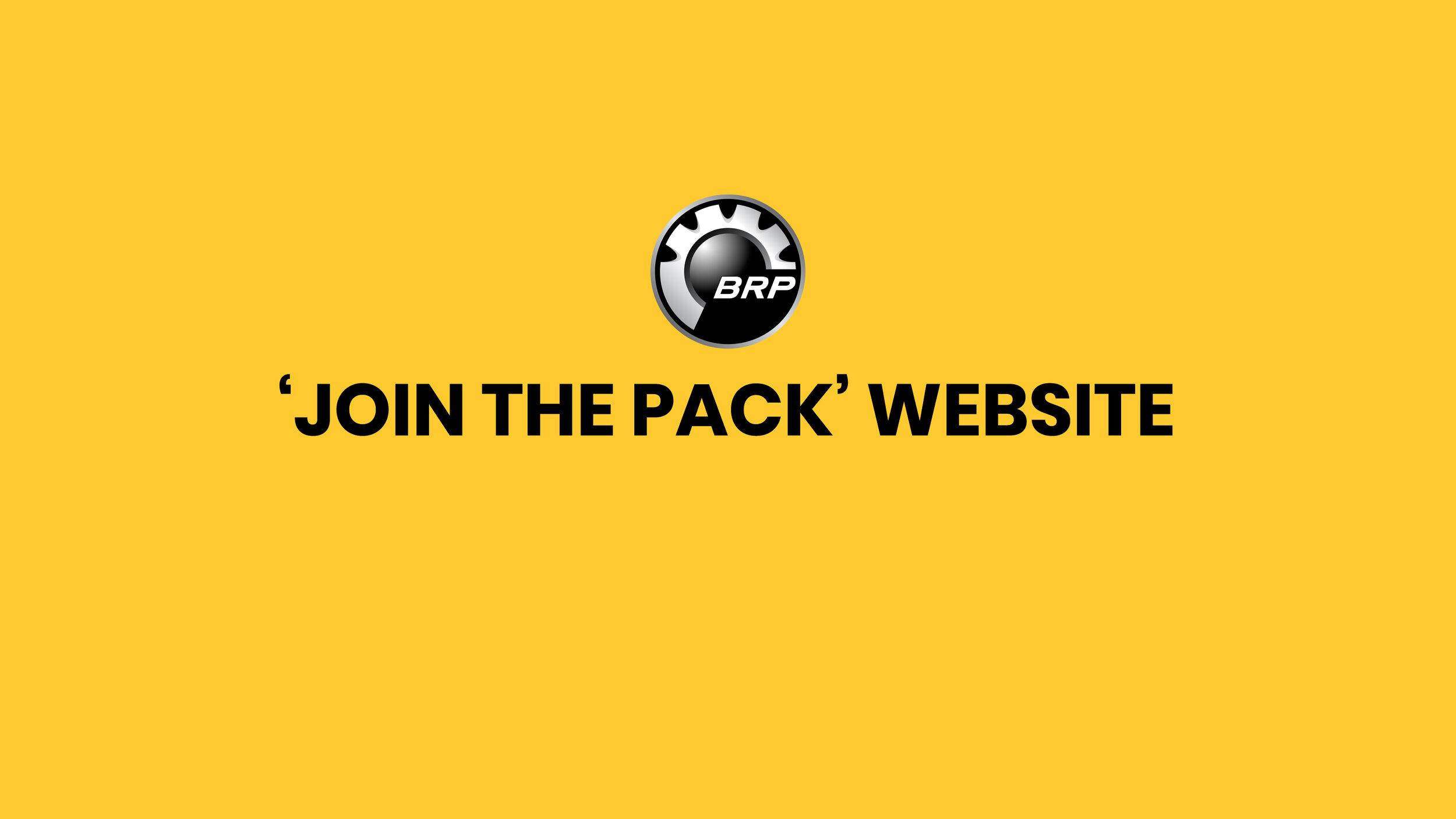 BRP_Website_copy_example-1.jpg