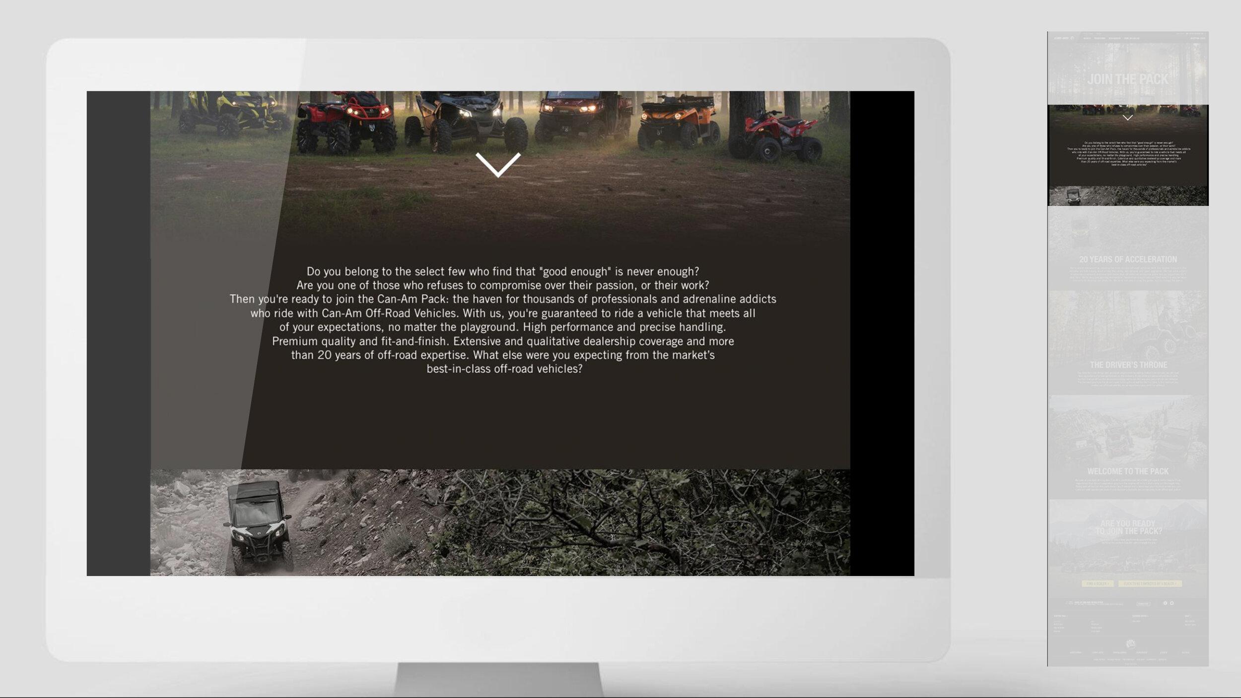 BRP_Website_copy_example-3.jpg