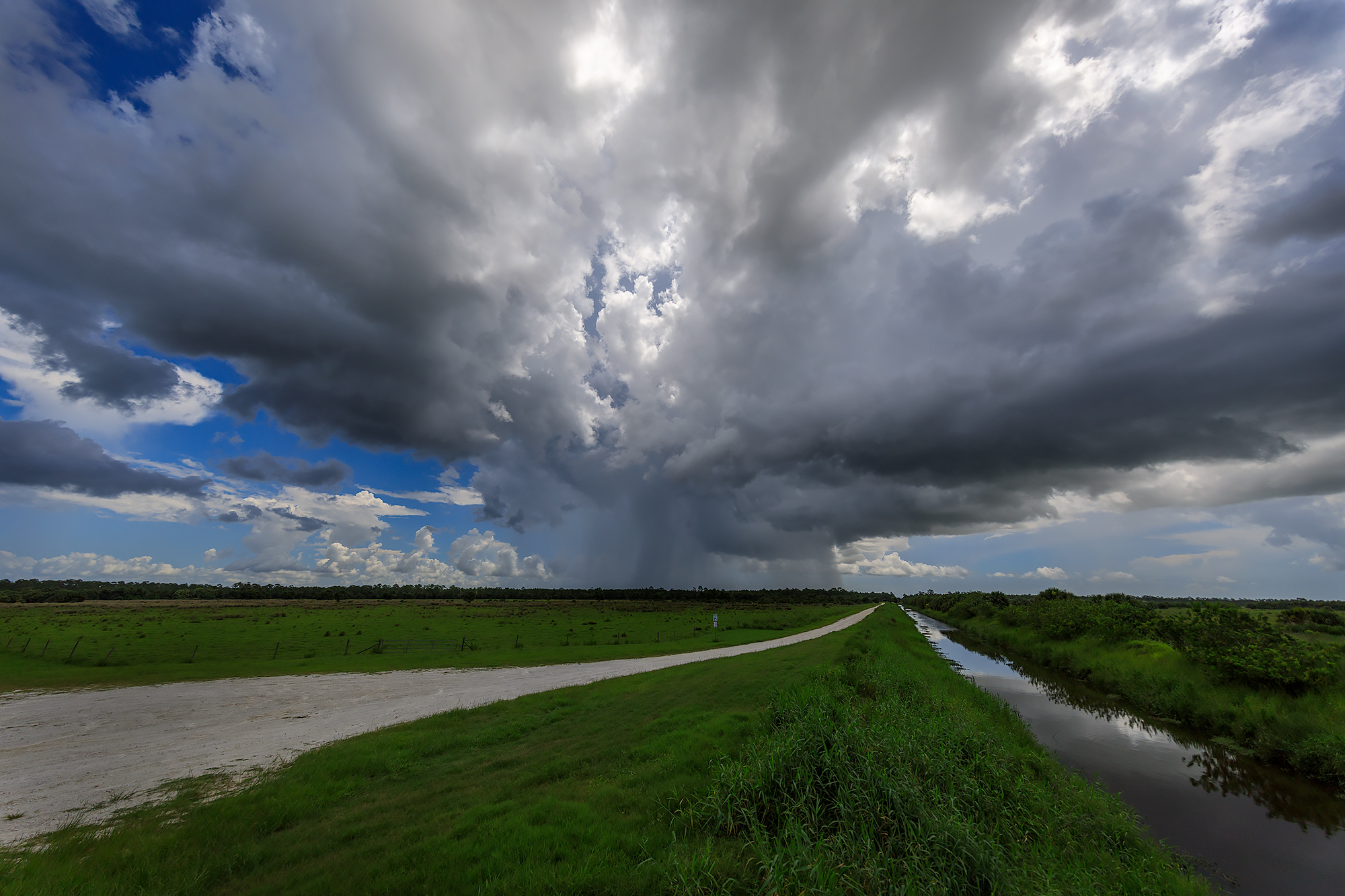 Summer Storm, Moccasin Island Tract, Florida