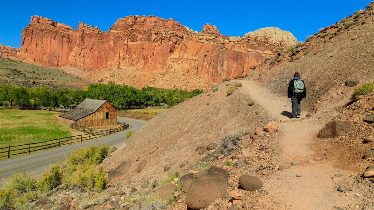 Cohab Canyon trail above Fruita