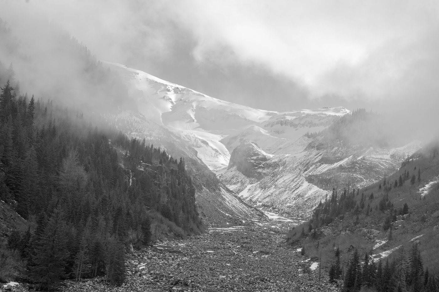 Nisqually River Valley, Mt. Rainer National Park