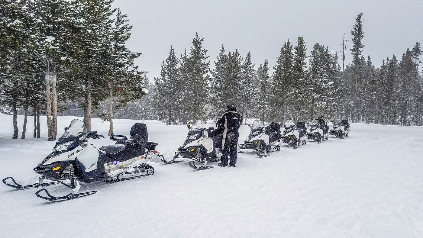 Snow sled line, Yellowstone