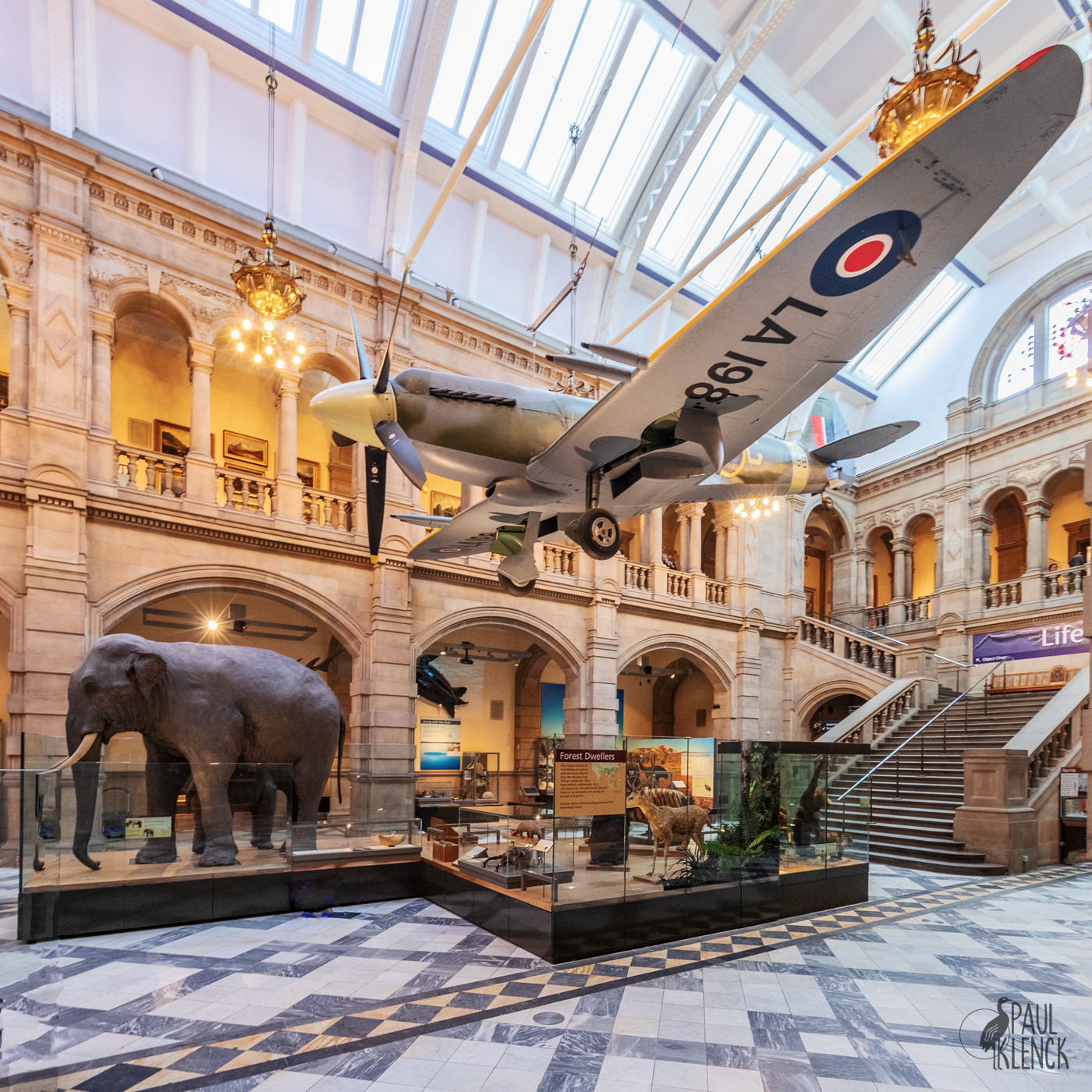 Kelvingrove - art gallery, natural history and aviation mash up