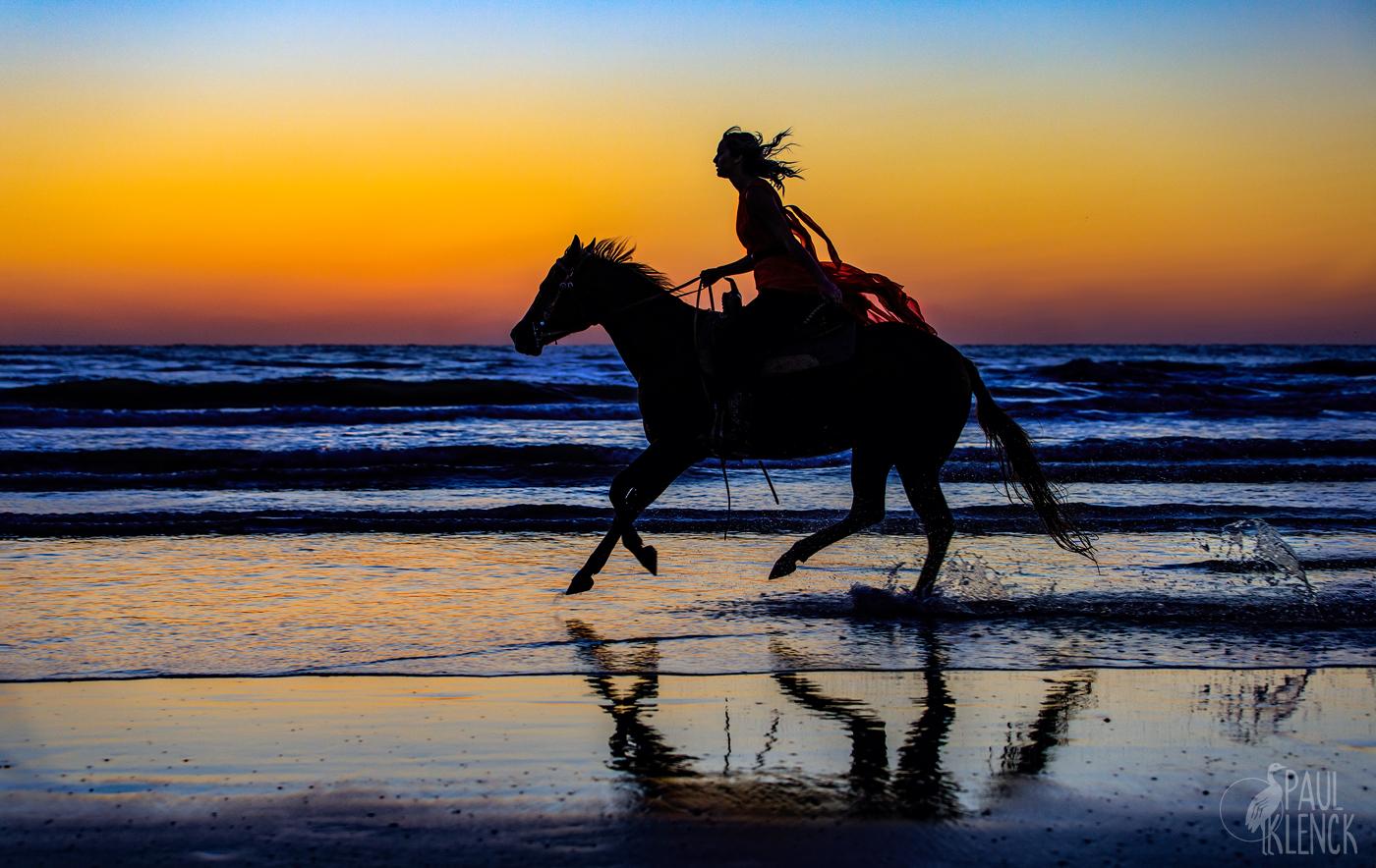 horse run 477a.jpg