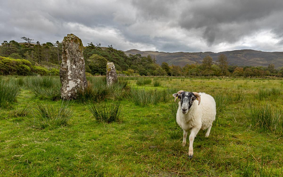 Mull stones ram-4994.jpg