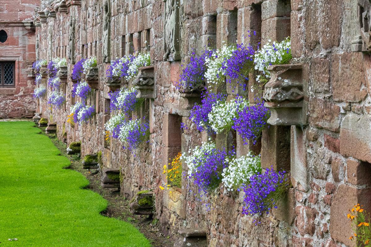 Edzell garden wall-niches 0121.jpg