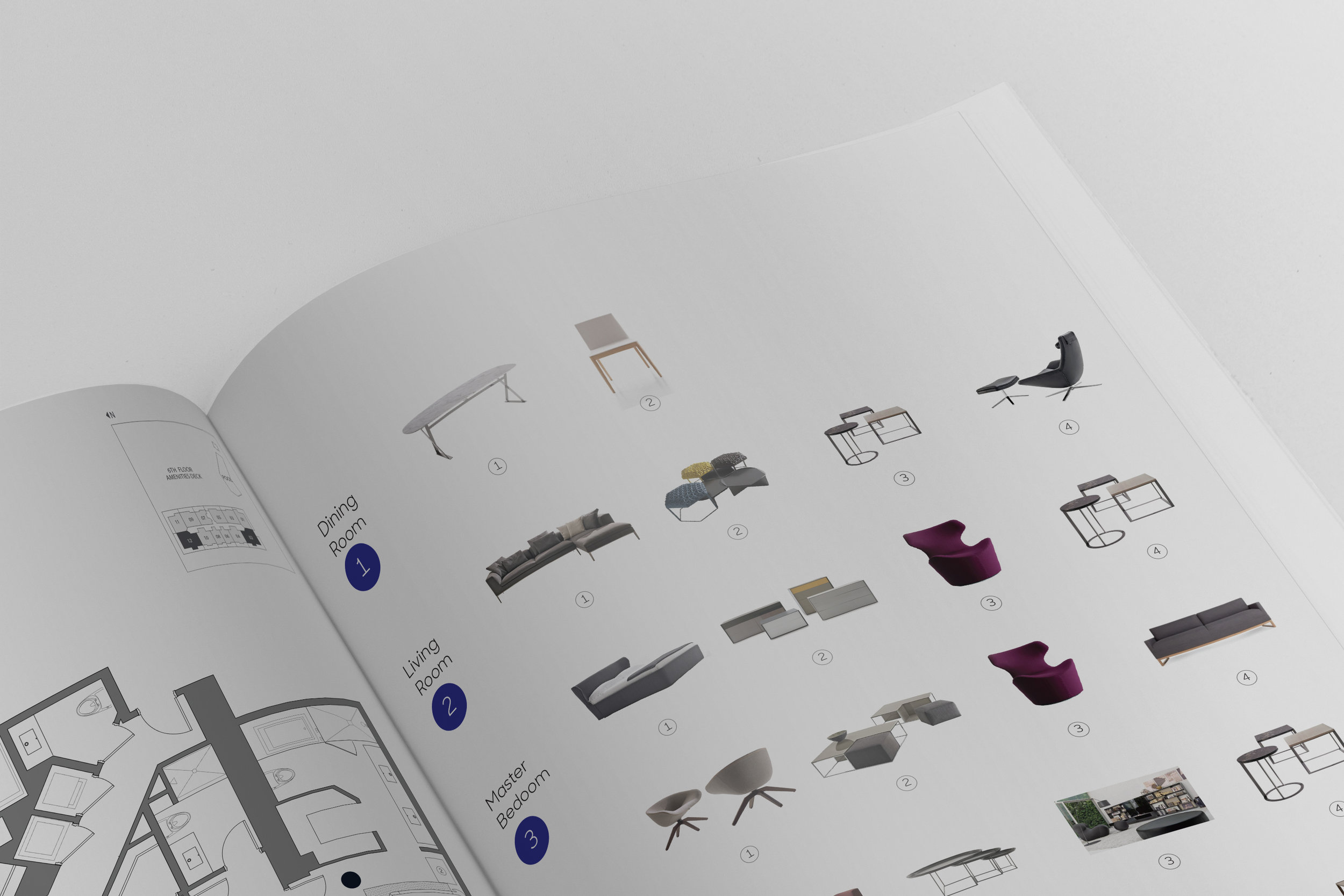 Rise Brochure close up.jpg