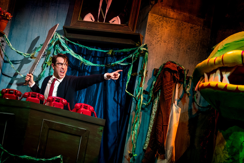 """As  Seymour  in """"Little Shop of Horrors"""", Shenandoah Summer Music Theatre (Photo C. King)"""