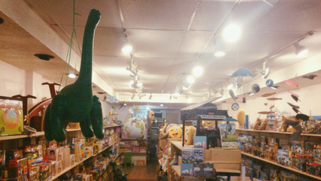 Tugooh Toys - Georgetown DC Toy Store Interior