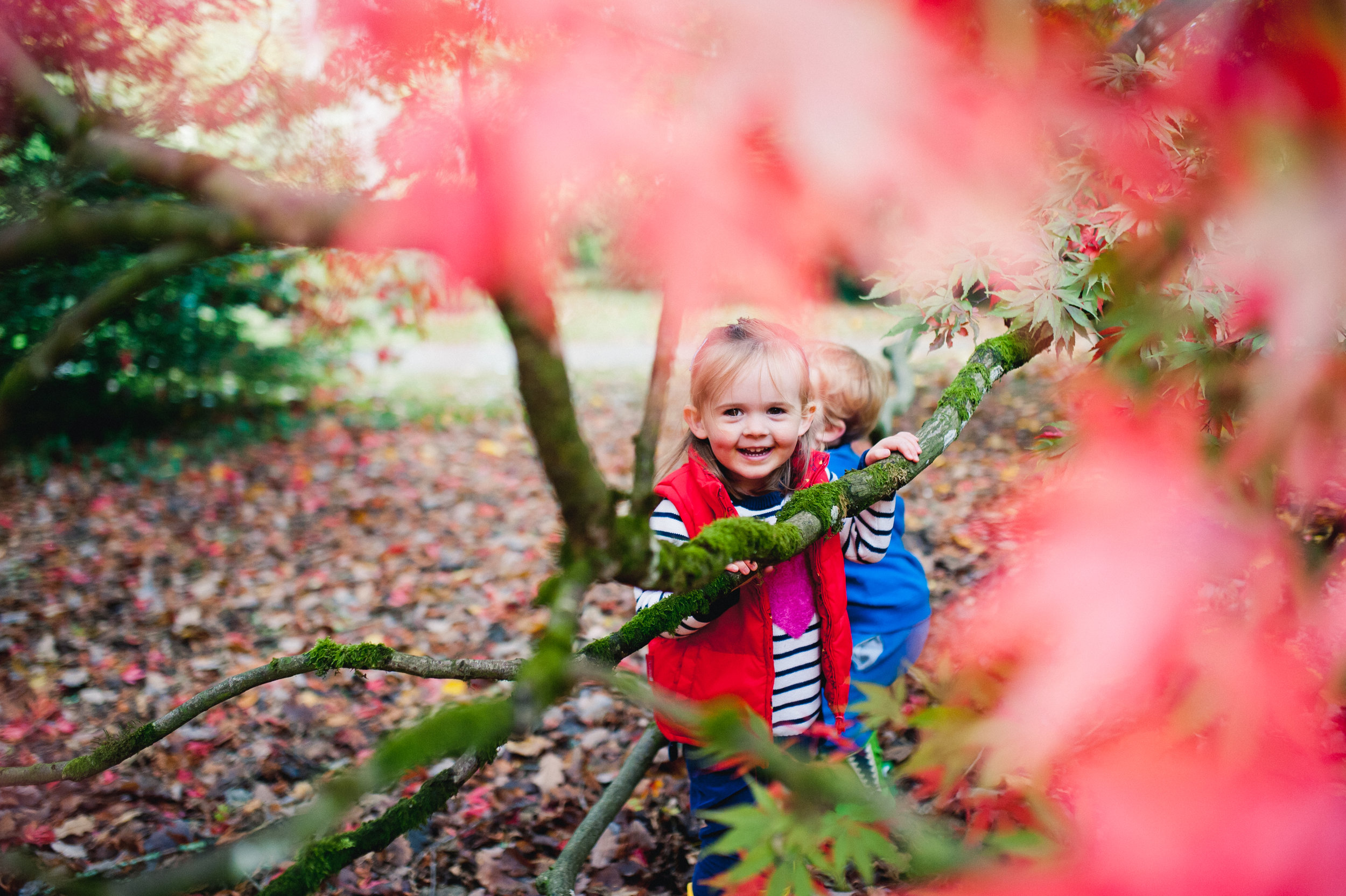 Adventure shoot - Climbing tree's in the forest, making sandcastles at the beach or just playing hide & seek at the local park. However your family chooses to be adventurous, if you love the outdoors then an adventure photoshoot is for you!2019 prices just £150