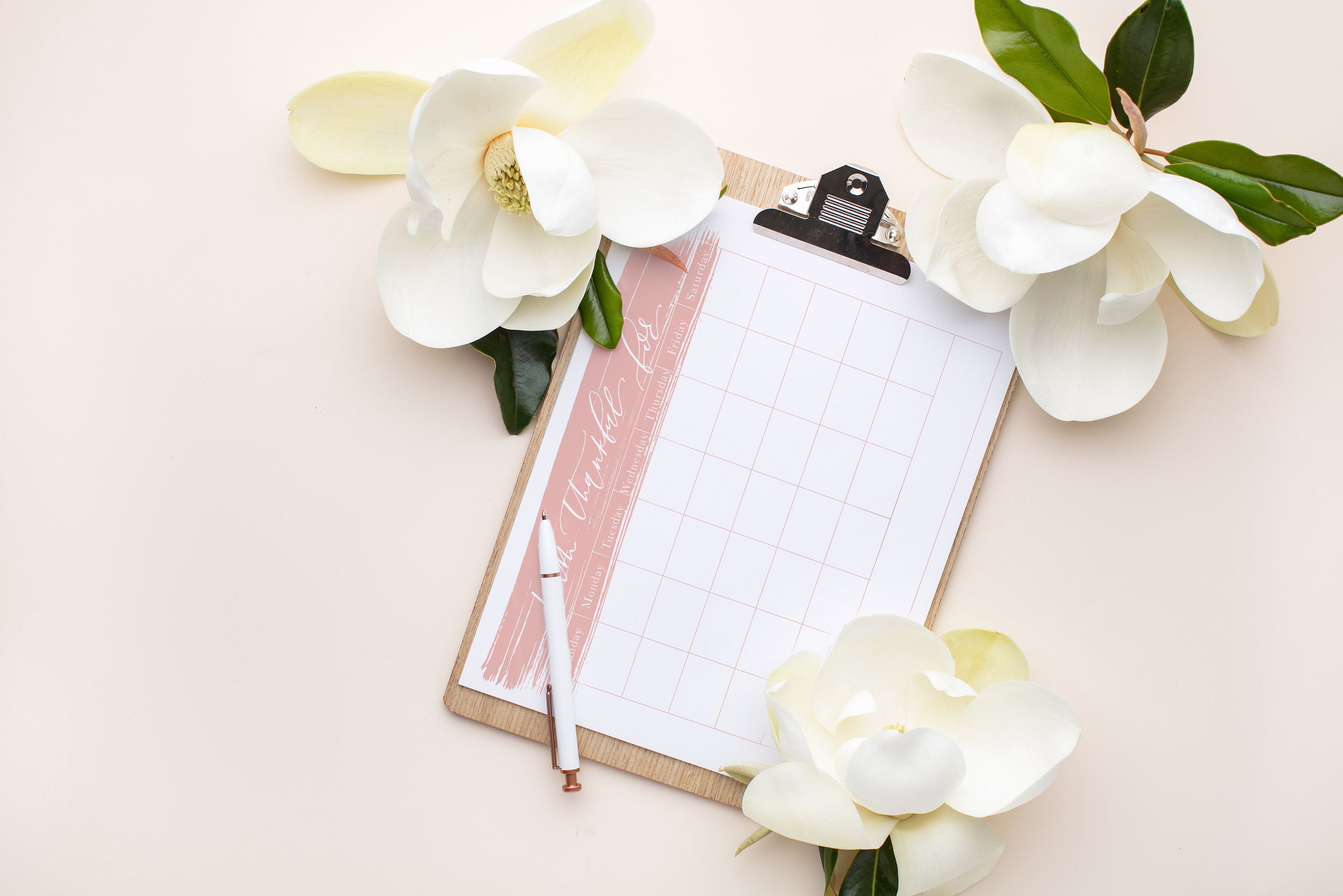 Free Printable Thankfulness Tracker/ Calendar | Lauren Antoniaa Calligraphy and Design