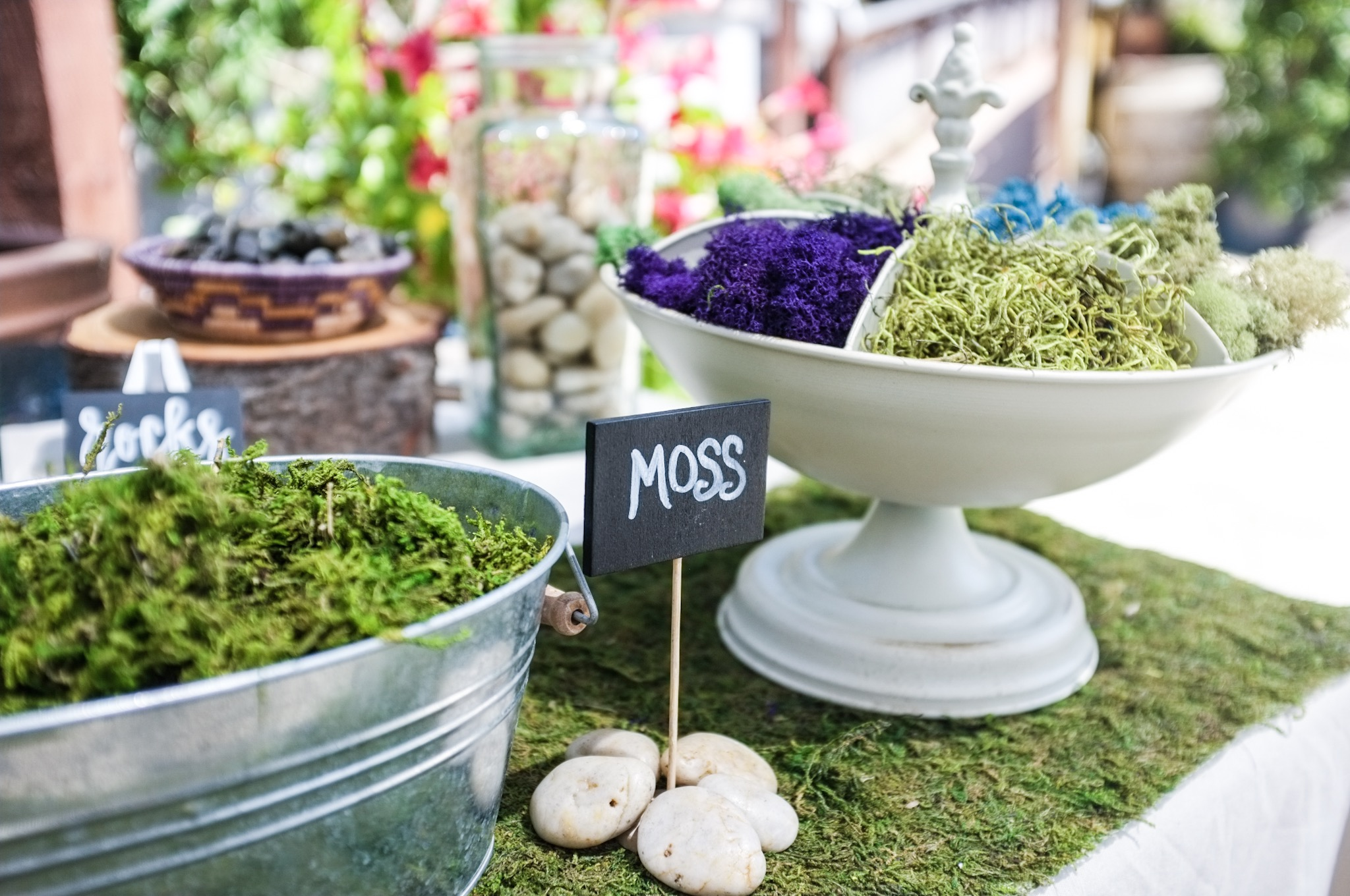 Succulent Soil, Pumice, Activated Charcoal & Moss - To enhance the life and look of your creations.