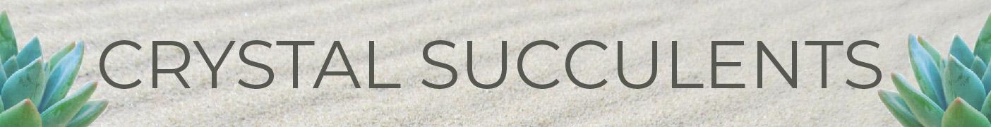 Succulents_Crystals_Rendel_Kristen_Gabaccia.jpg