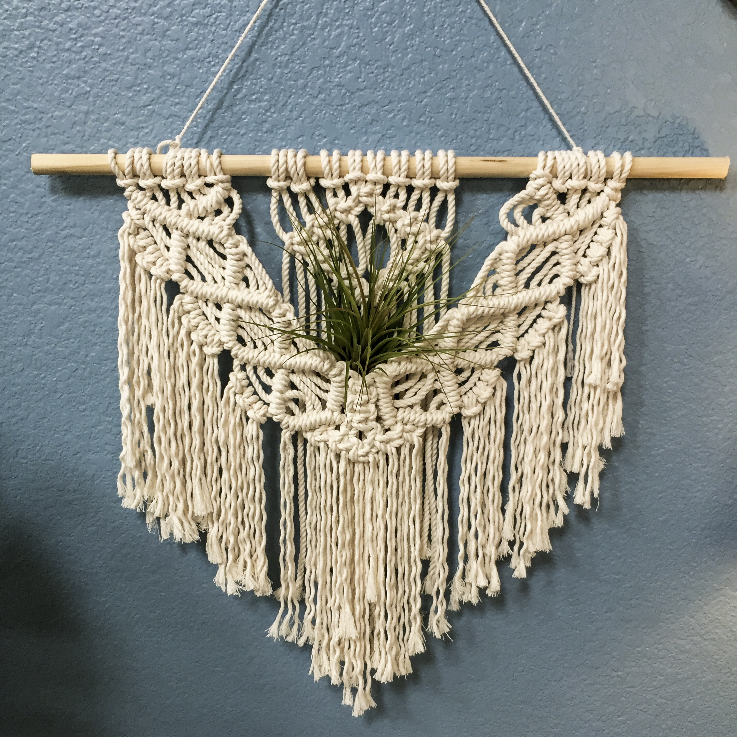 theknotspot large macrame wall hang with airplant 1.jpg