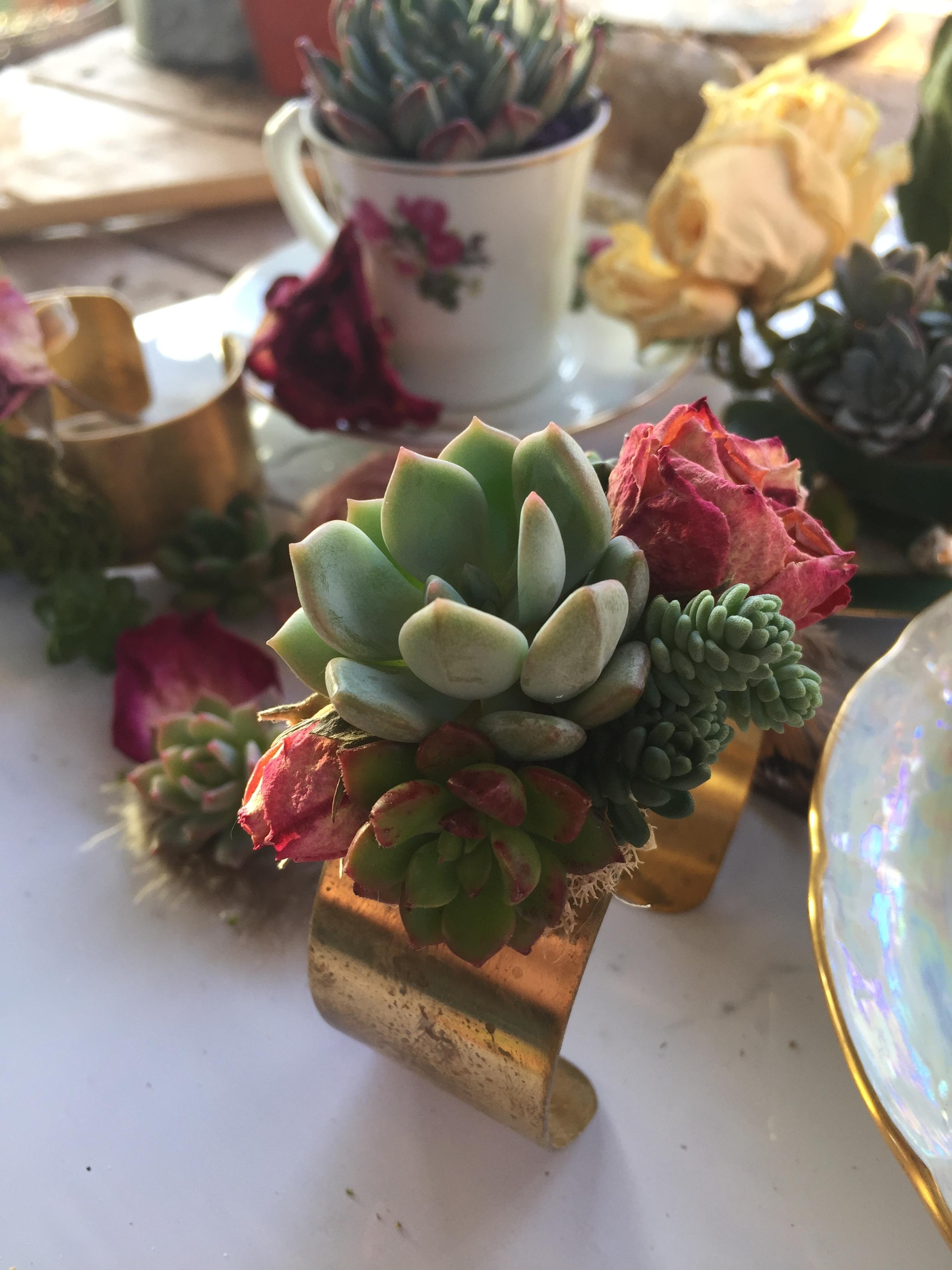 living_bracelet_succulent