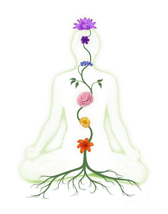 Flower Chakra Illustration by Oleksiy Maksymenko