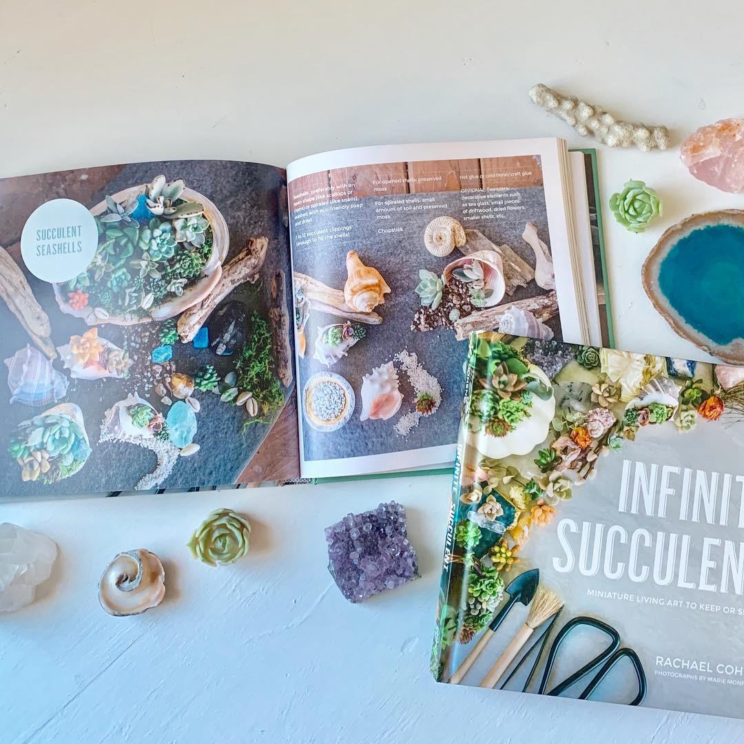 infinitesucculentbook.jpg