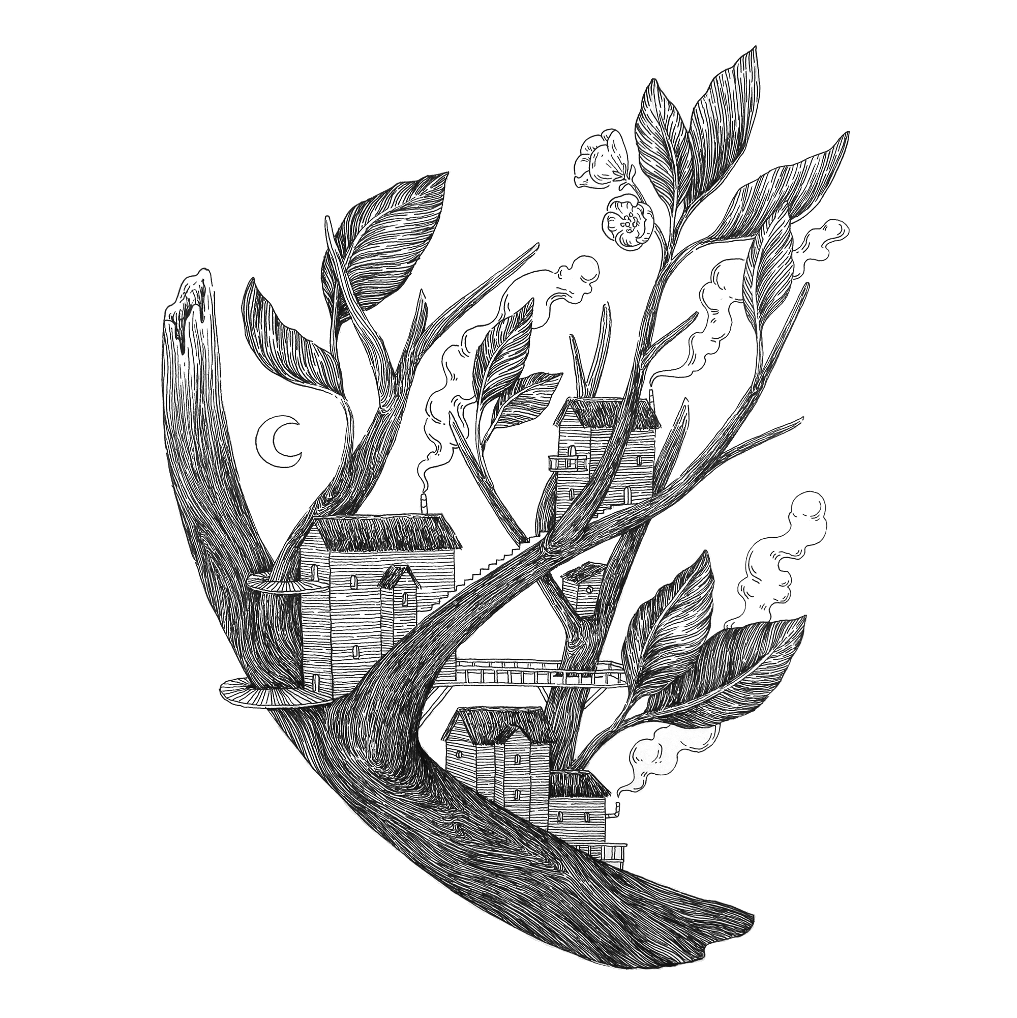 treetown.2000px.png
