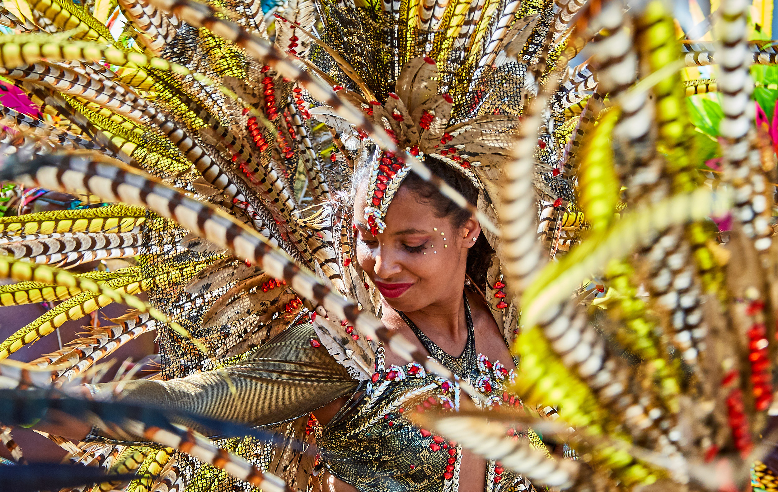 Notting Hill Carnival 2017 Participants