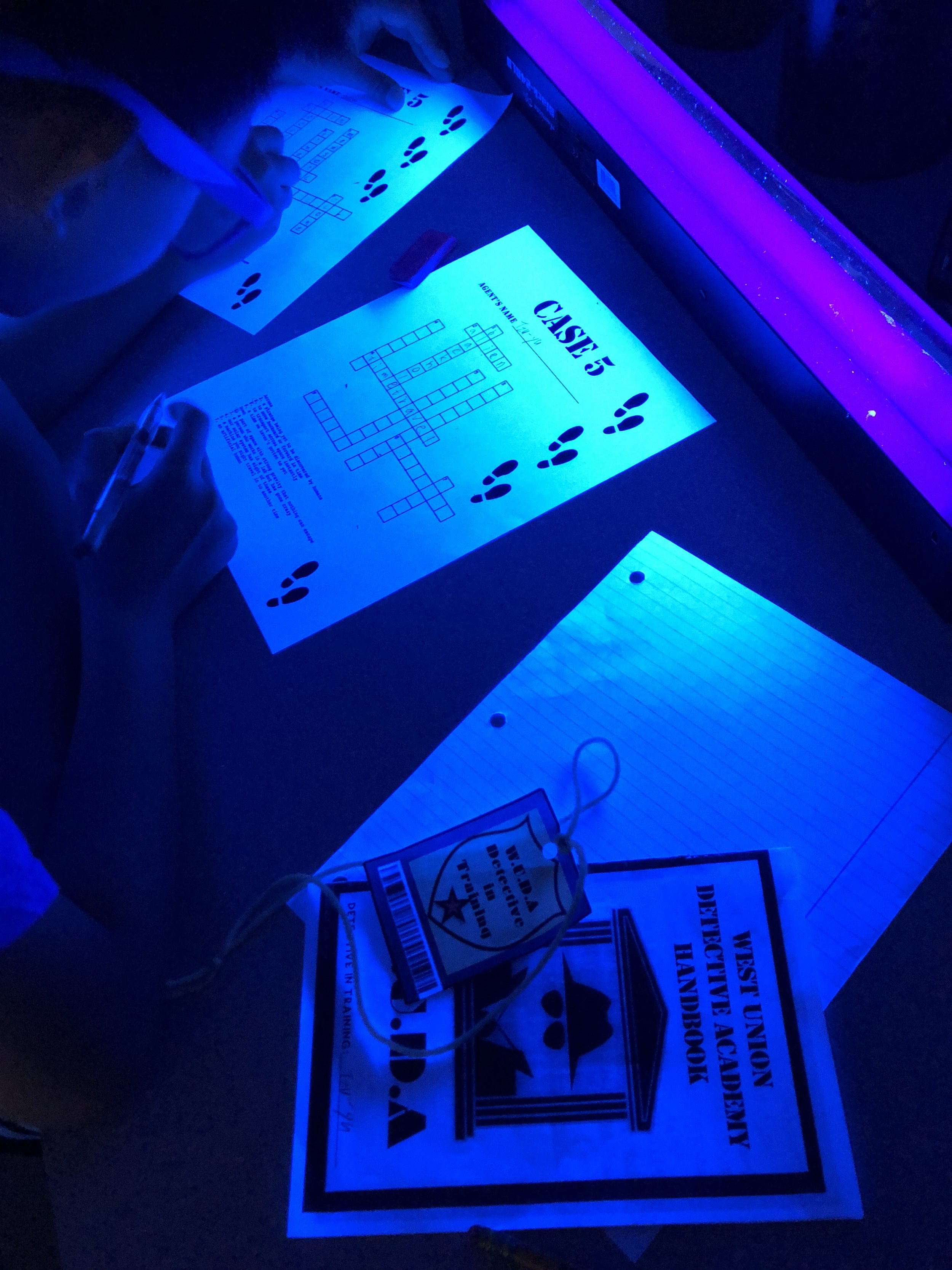 Adding black lights sets the stage and creates an engaging atmosphere. I use three black lights in my classroom which can be found  here .