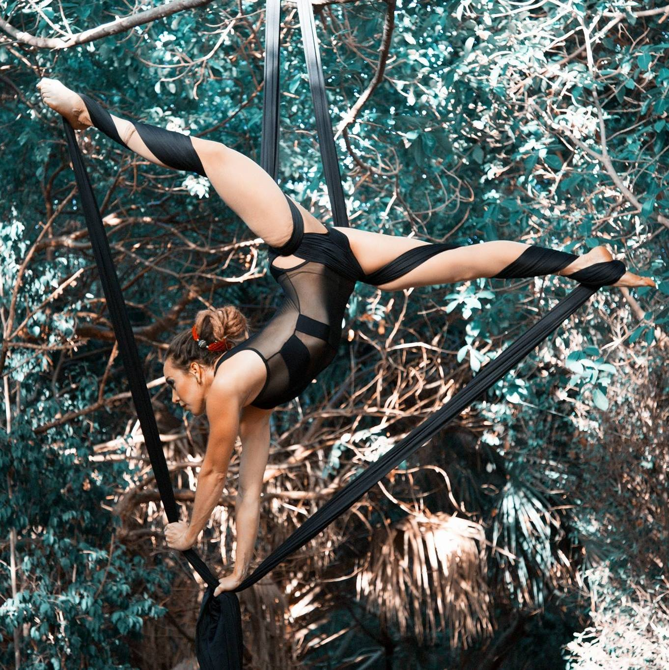 This is me. I started aerial silks for some quick fitness... but it ended up being a long term relationship.