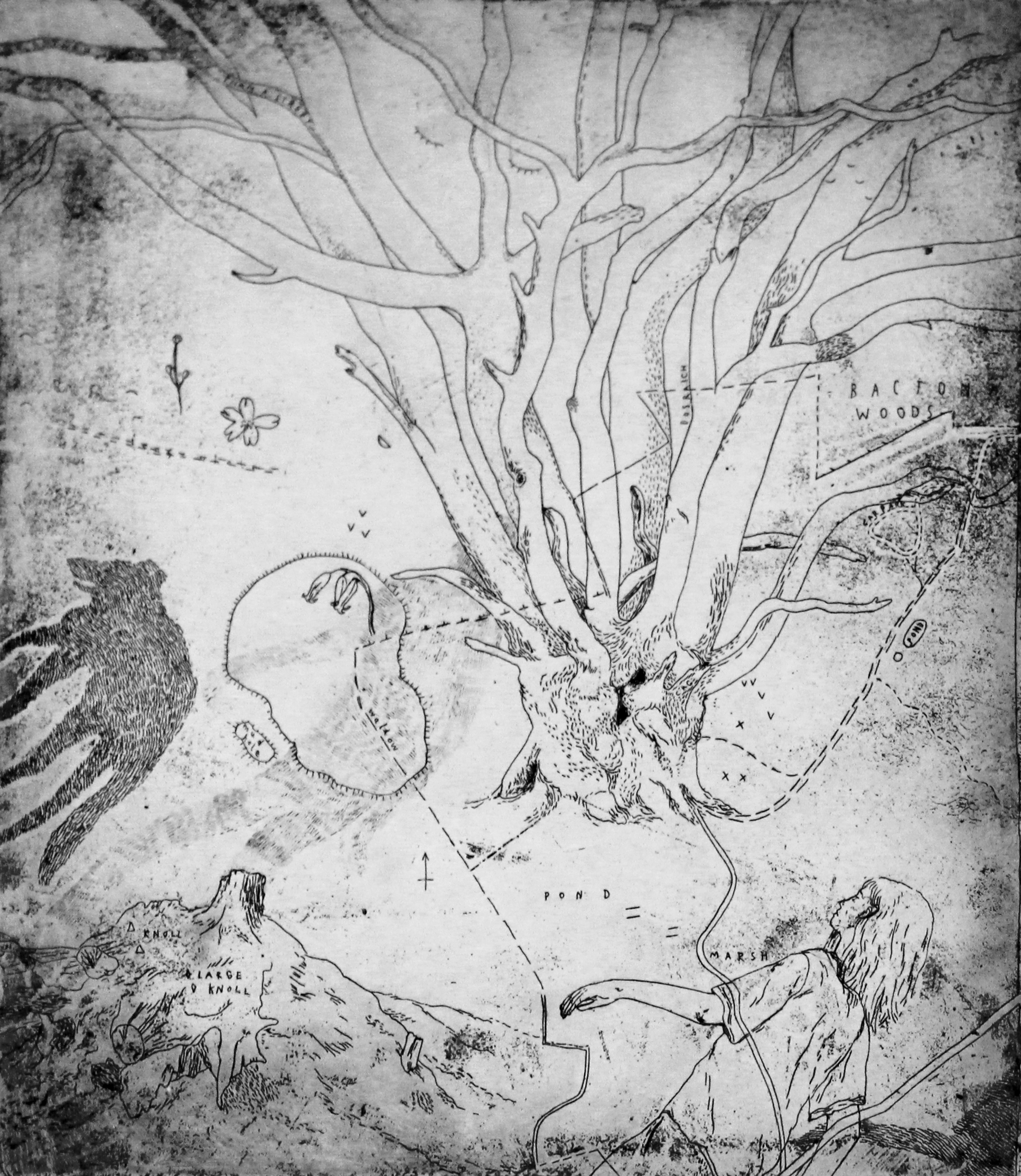 6. Keziah Philipps, Bacton Wood, copper etching, 20cm x 25cm.jpg