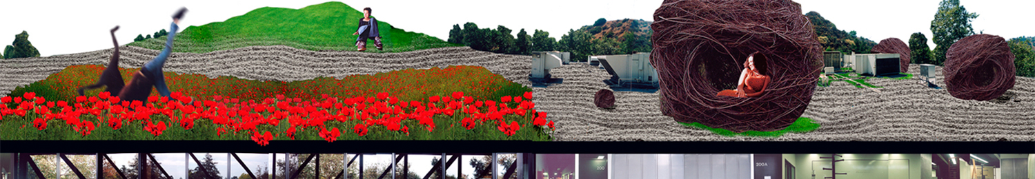 accd_collage_end_1500_2.jpg