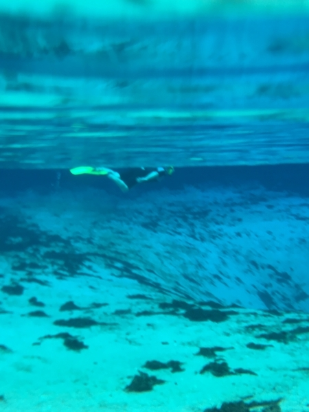 Silver Glen Springs, Florida has sand and clear blue fresh water.