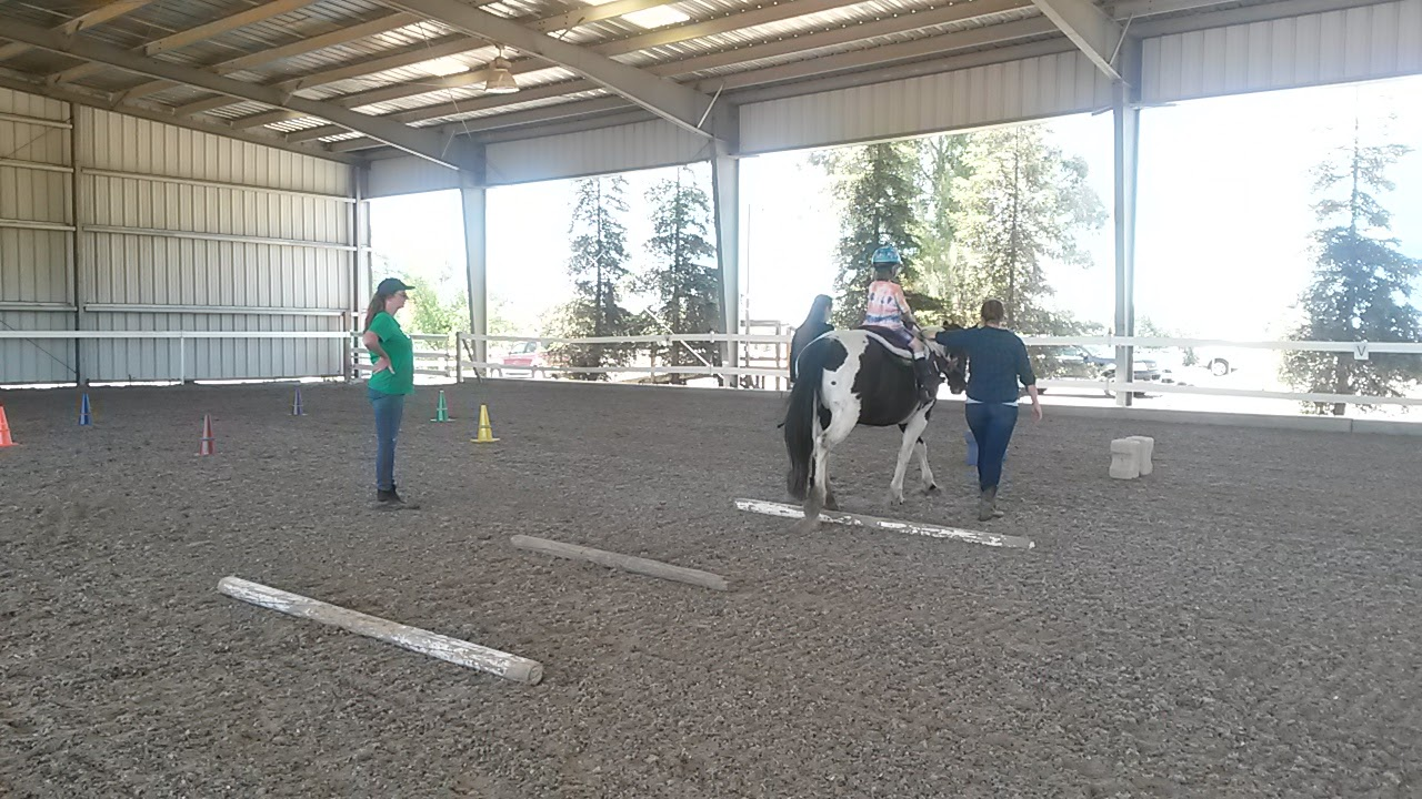 """Guiding over Poles  When walking over the poles, the client says """"over"""" which both lets the horse know to pick up its feet a bit more and keeps the client engaged in the process. It promotes a sense of pride, because the horse is dependent on the rider for sucess."""