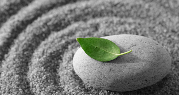 Mindfulness - Digital Mindfulness and Meditation sessions to help you reduce stress and anxiety while improving focus, energy and relaxing your mind.