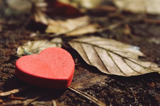 heart-1318850__340.jpg