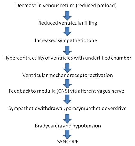 Pathophysiology of vasovagal syncope from RCEMLearning, 2018