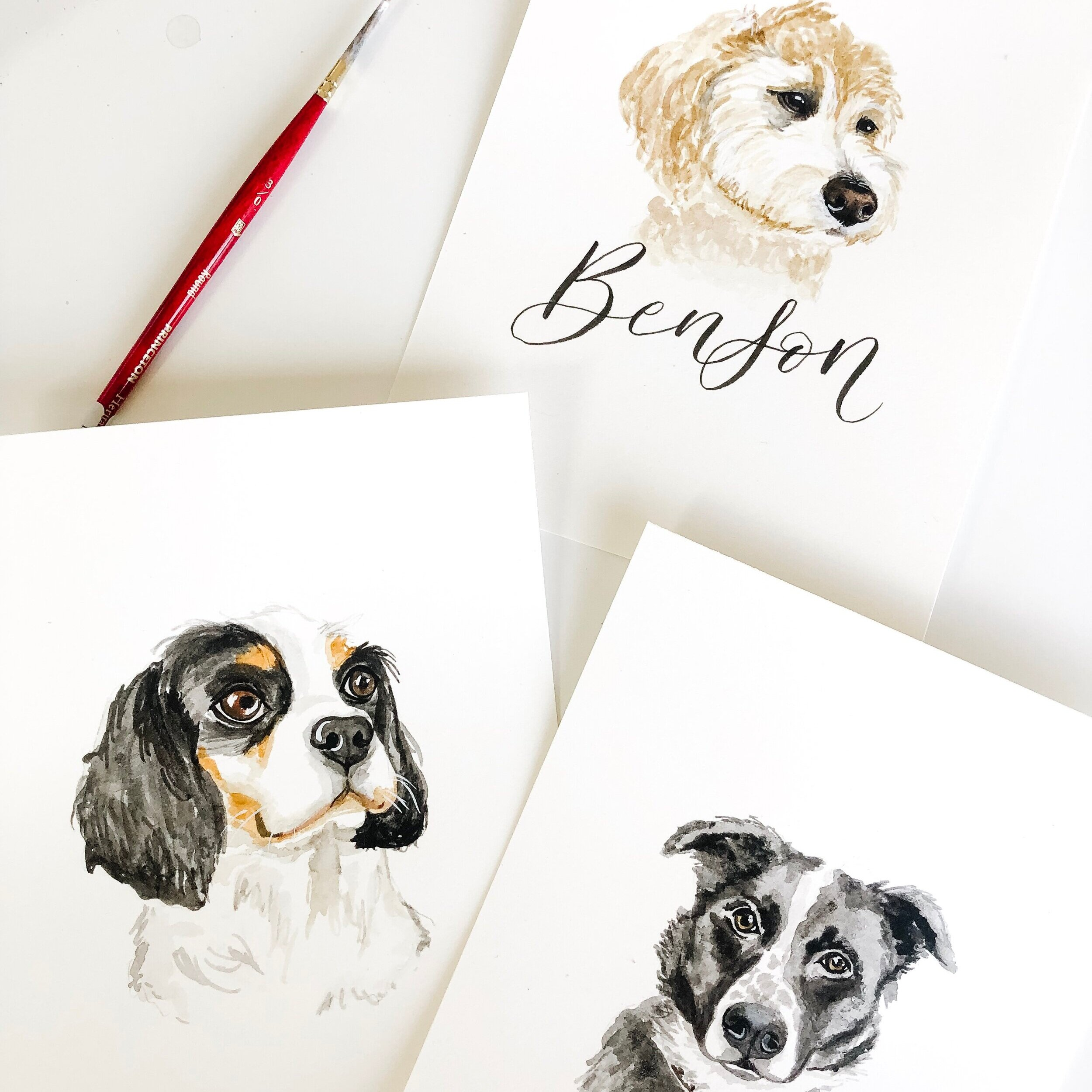 Order a custom watercolour pet portrait of your dog, cat or favourite furry friend! Limited spots. -