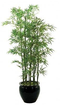 bamboopot.jpg