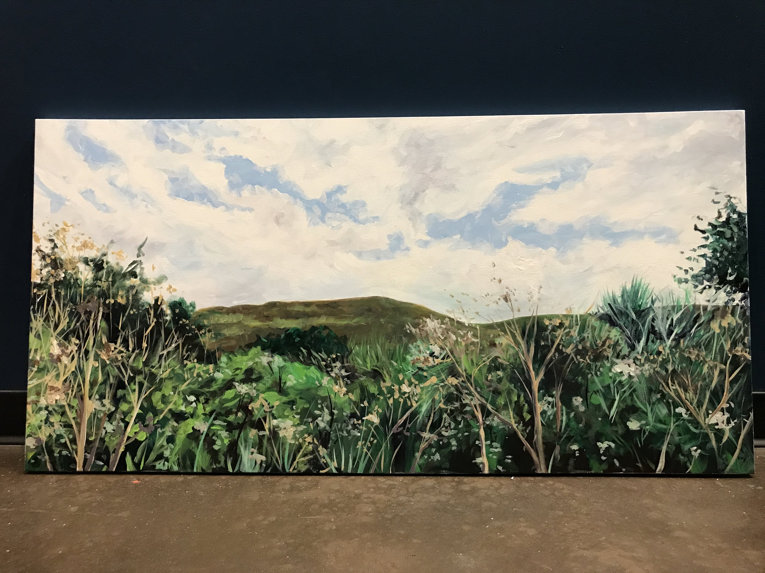 Golden, CO . 24x48in Acrylic on Canvas