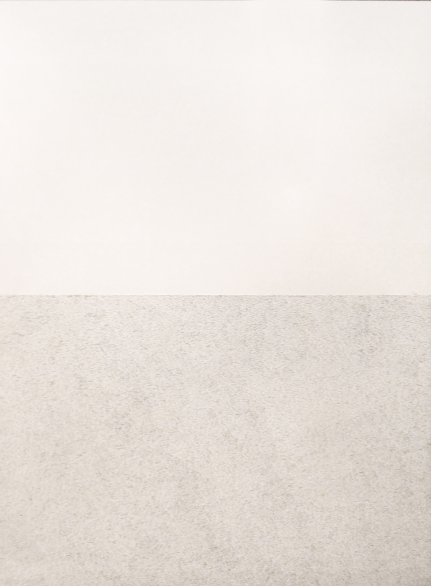Waver / 2010 / Correction fluid, paper / 78x109 cm