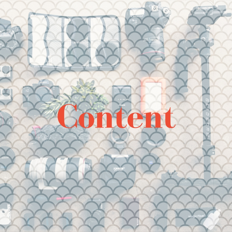 Content - One Dragon works with each client intimately to create a content strategy that makes sense. Content strategies should align with the client's overall objective, be on brand and engaging.