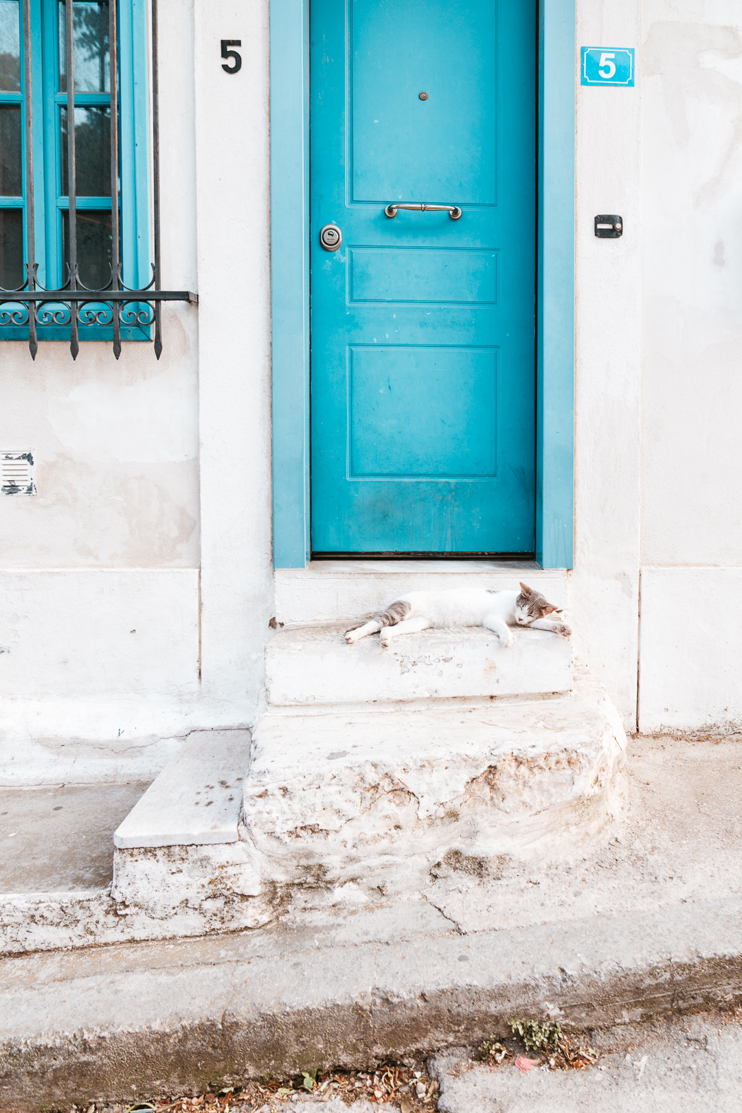 Ashley_Mathieu_Travel_Photos_Greece_Athens_Colorful-Door_Cat.jpg