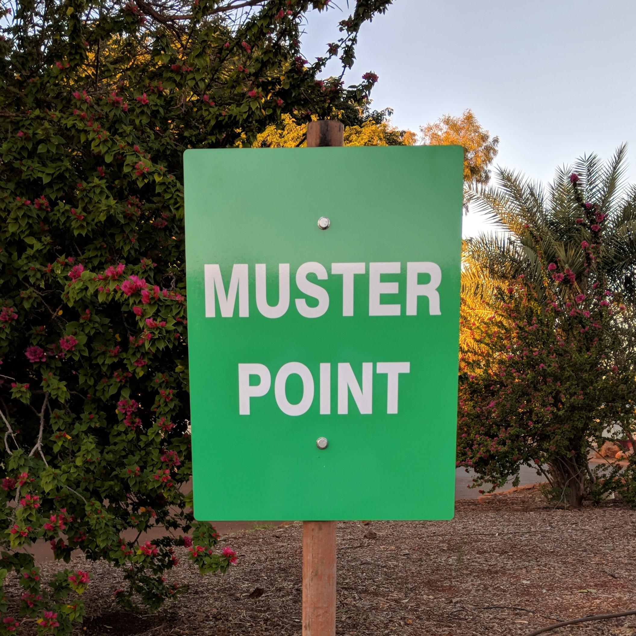 Muster-point.jpg