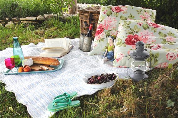 French-family-picnic.jpg