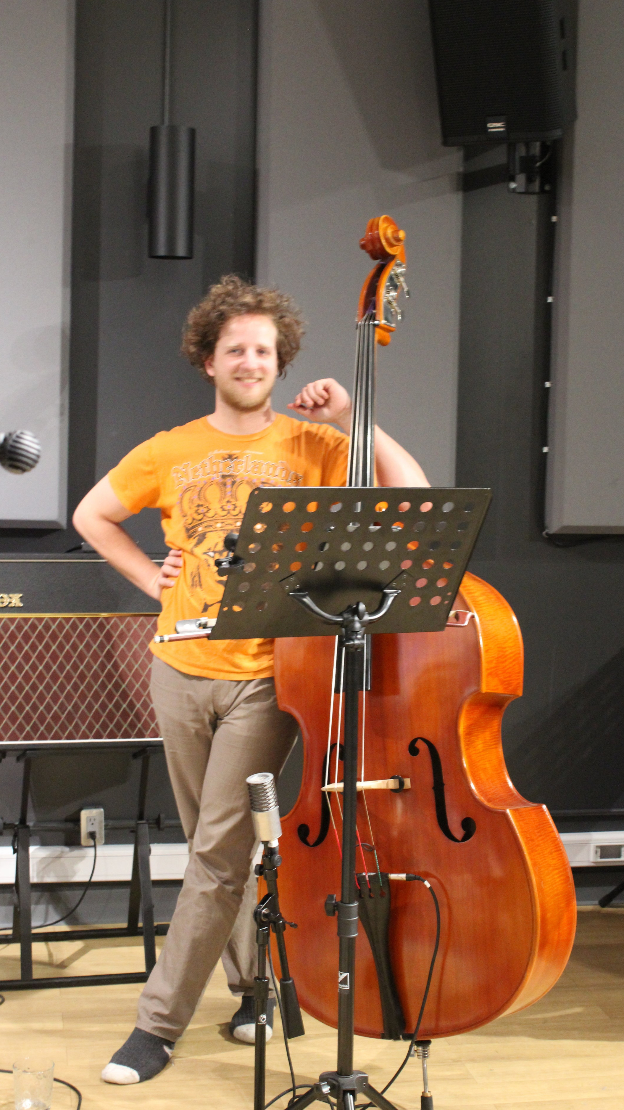 Chris Adriaanse, Lynx studio, Alluvial Plain