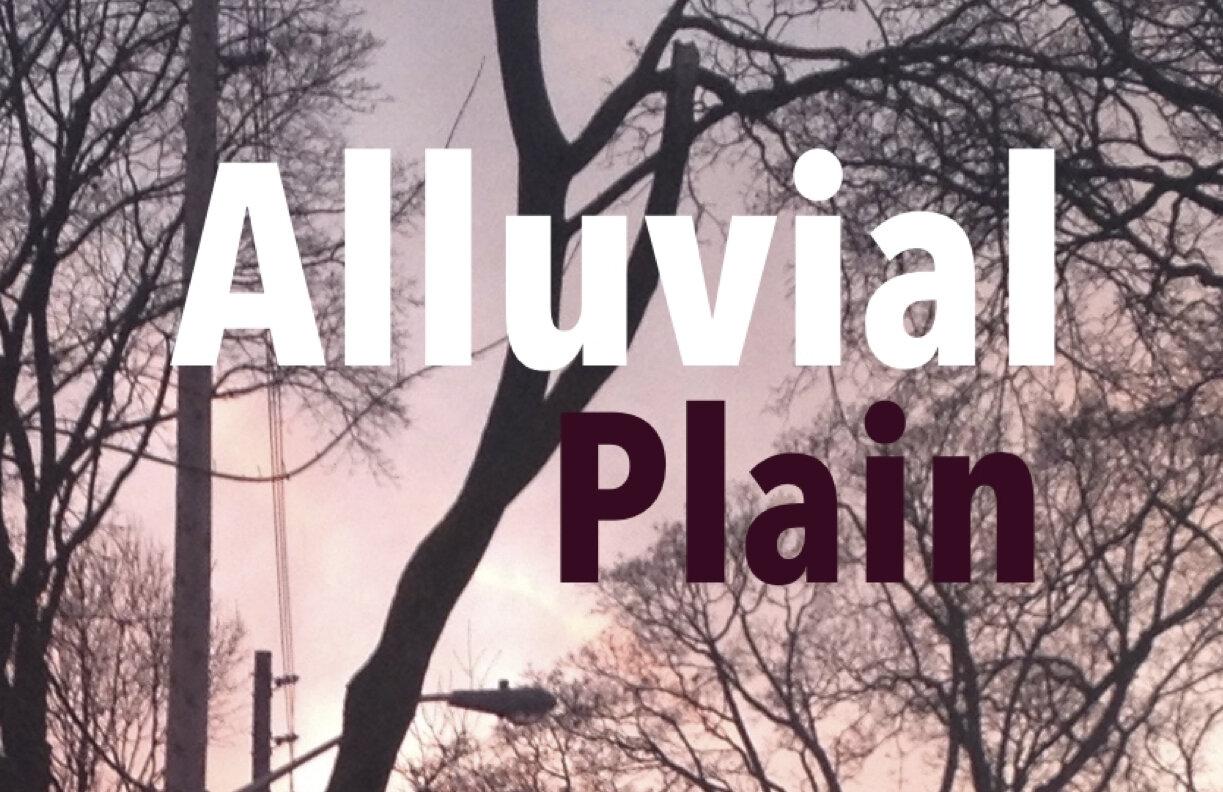 AlluvialPlainTreesFeb:19.jpg