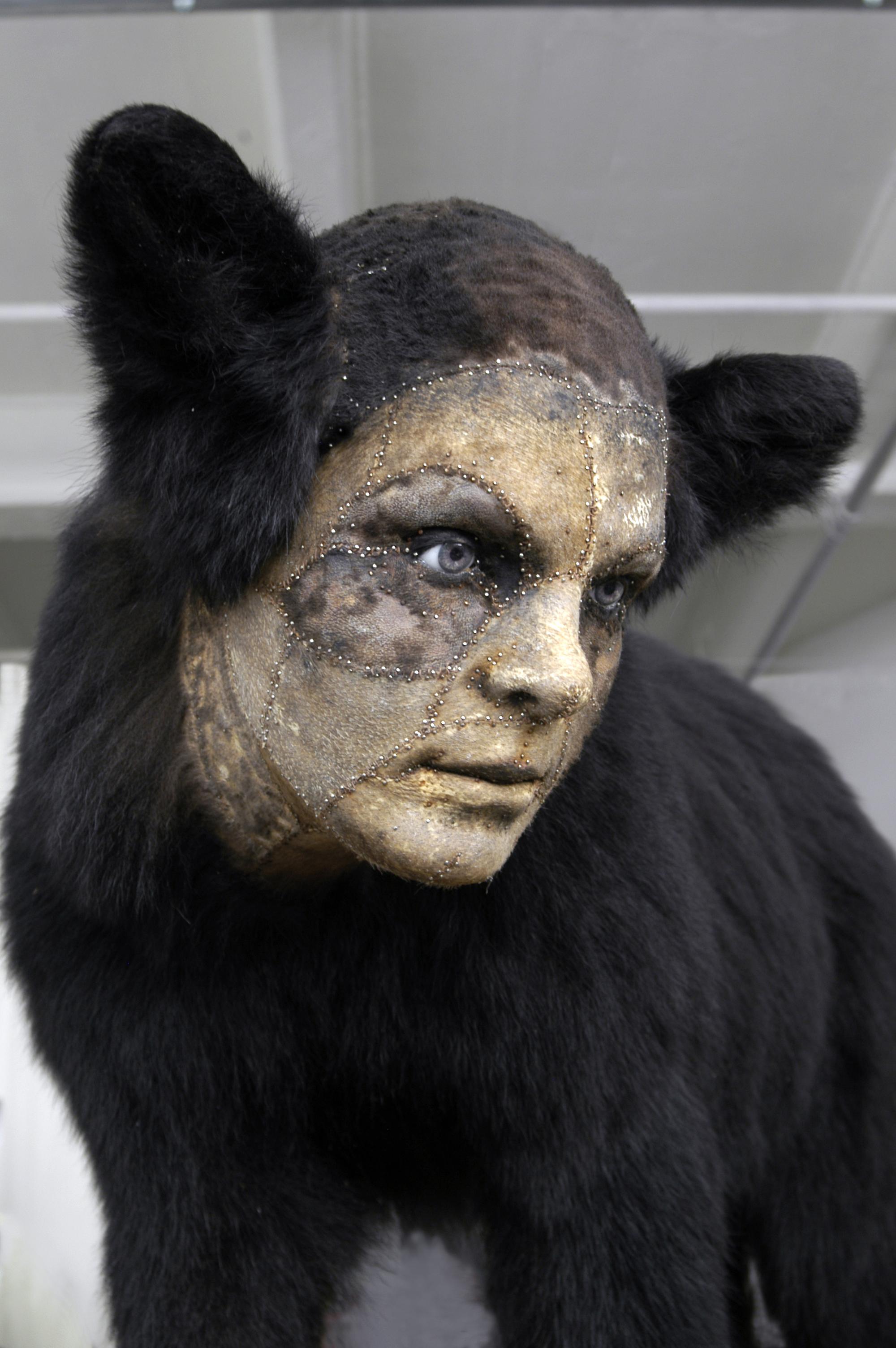 Untitled Black Bear detailbear.jpg