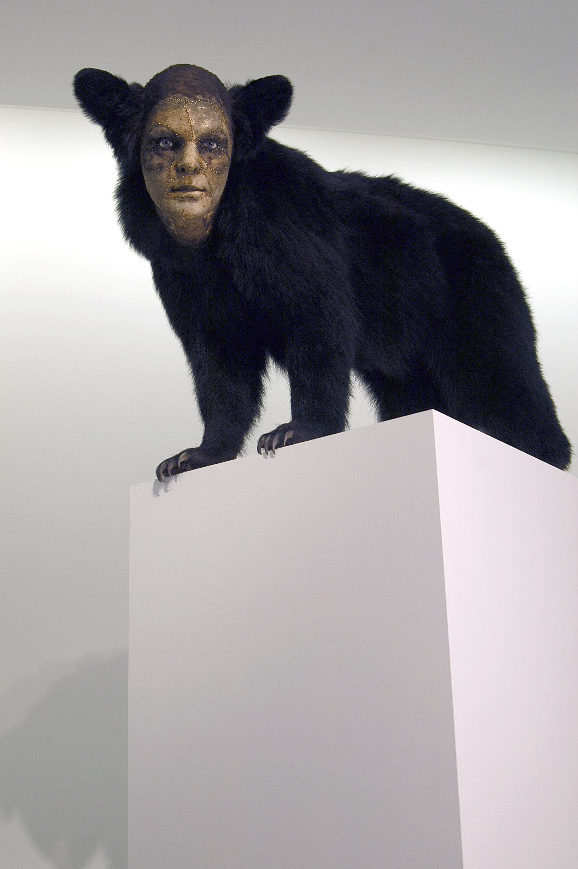 Untitled Black bear.jpg
