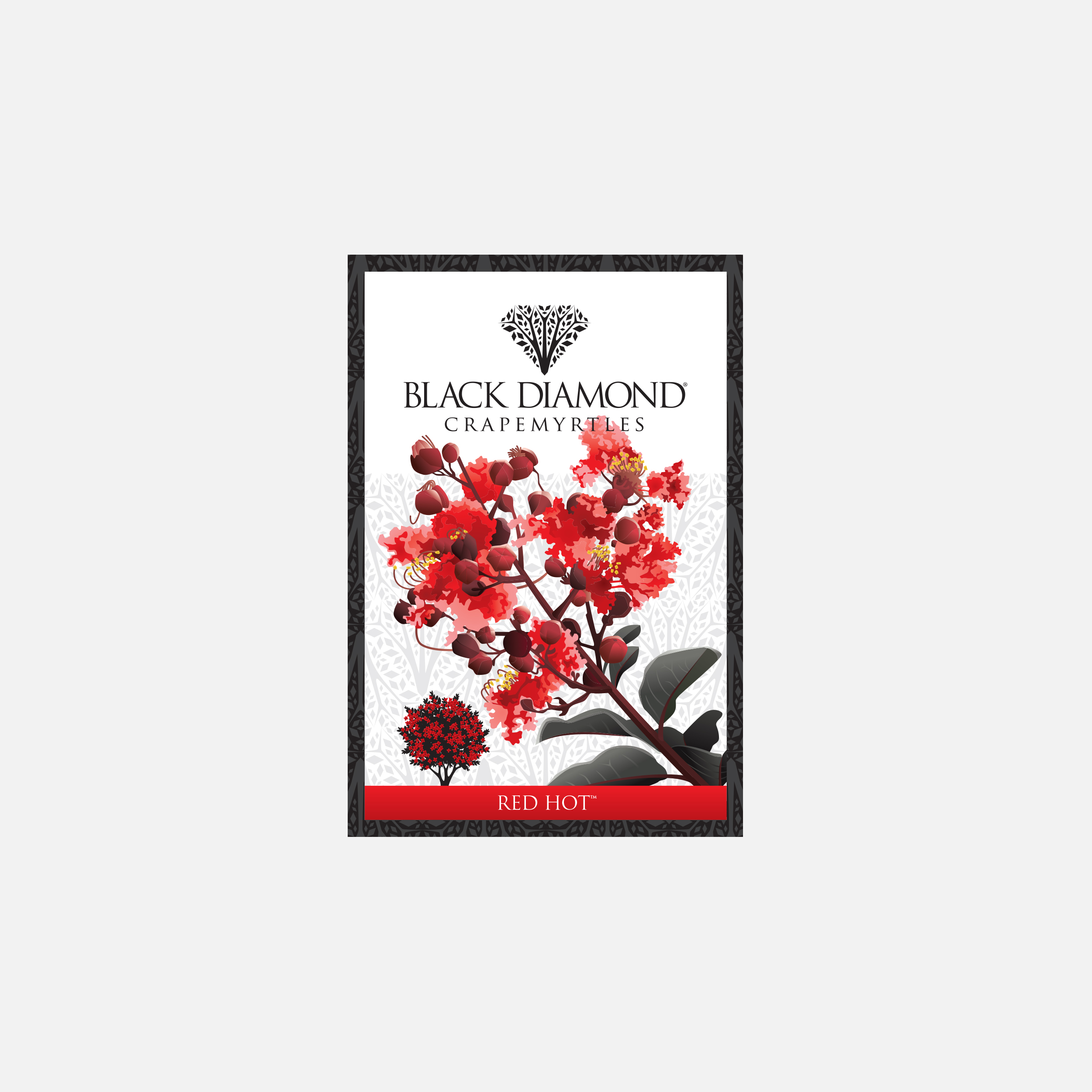 Black Diamond Crapemyrtles plant tag