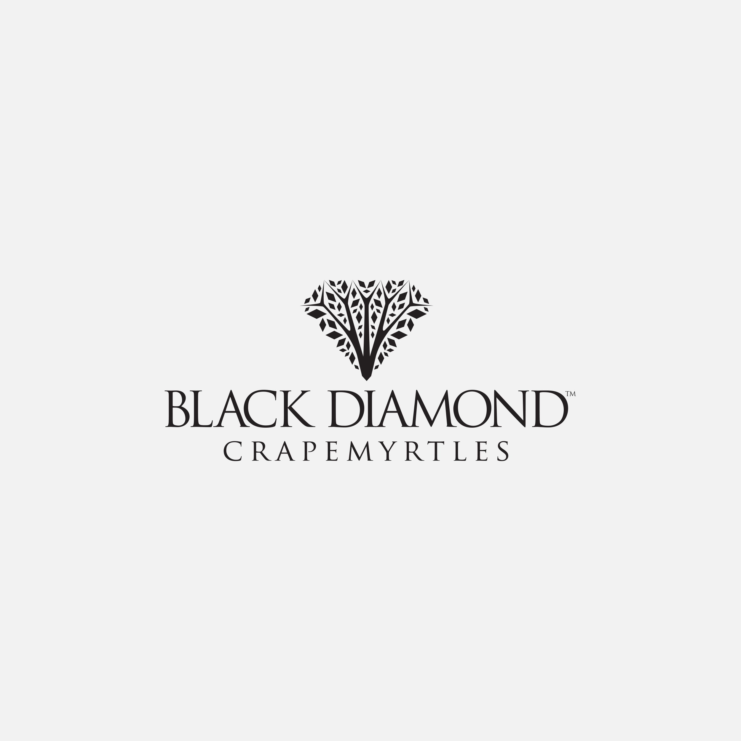 Black Diamond Crapemyrtles logo