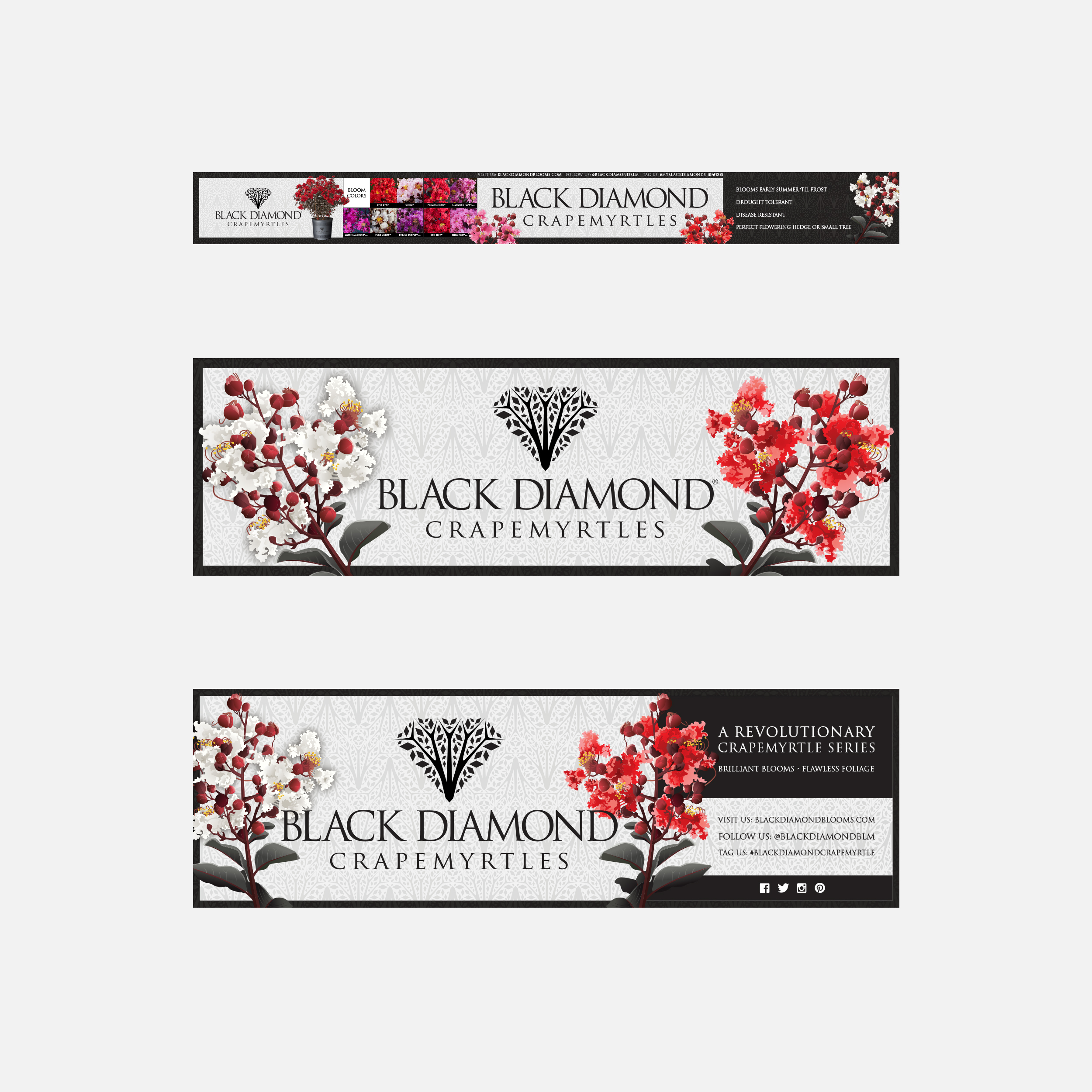 Black Diamond Crapemyrtles banners